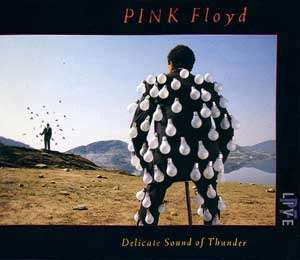Pink Floyd – Delicate Sound Of Thunder